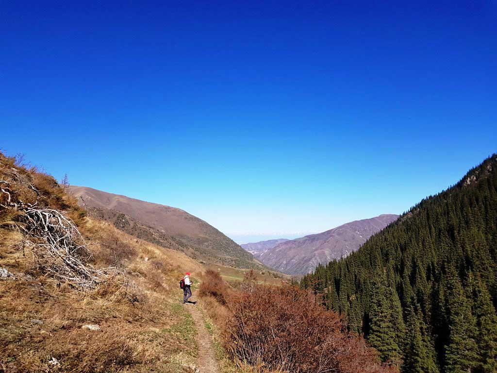 >В далеке видна Чуйская долина
