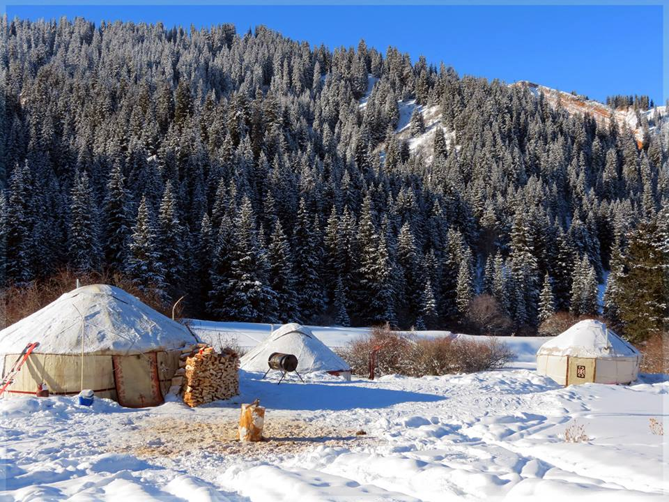 >Yurt camp for skiers